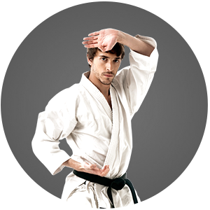 Martial Arts Popkin Brogna Jujitsu Center Adult Programs